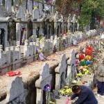 День Поминовения (Цинмин или праздник «чистого света»)